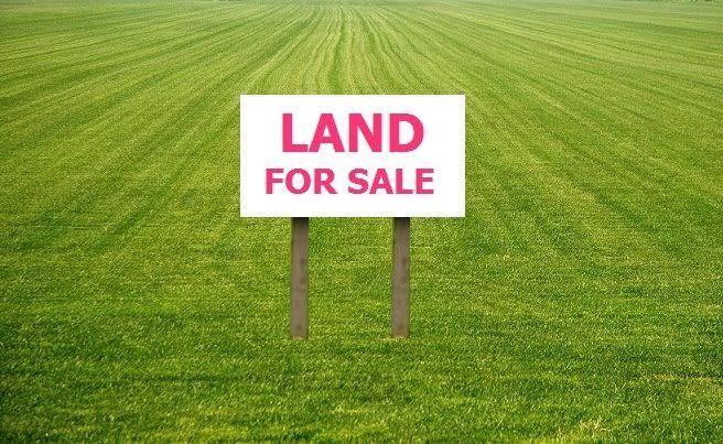 How to get cheap lands